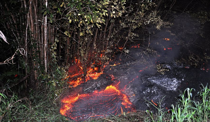 This Tuesday, Oct. 28, 2014 photo provided by the U.S. Geological Survey shows lava burning vegetation as it approaches a property boundary above the town of Pahoa on the Big Island of Hawaii. After weeks of slow, stop-and-go movement, a river of asphalt-black lava was less than the length of a football field from homes in the Big Island community Tuesday. The lava flow easily burned down an empty shed at about 7:30 a.m., several hours after entering a residential property in Pahoa Village, said Hawaii County Civil Defense Director Darryl Oliveira. A branch of the molten stream was less than 100 yards (90 meters) from a two-story house. It could hit the home later Tuesday if it continues on its current path, Oliveira estimated. Residents of Pahoa Village, the commercial center of the island's rural Puna district south of Hilo, have had weeks to prepare for what's been described as a slow-motion disaster. Most have either already left or are prepared to go. (AP Photo/U.S. Geological Survey)