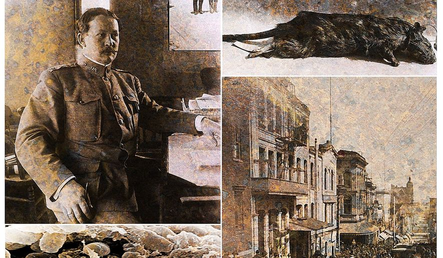 Federal Health Officer Dr. Rupert Blue, the bubonic plague virus, a view of San Francisco in 1904 and a rat caught and exterminated in the city       The Washington Times