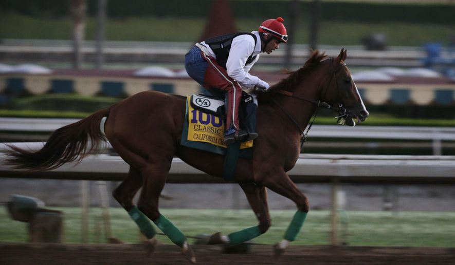 Exercise rider Willie Delgado takes California Chrome for a morning workout ahead of the Breeders' Cup Classic horse race at Santa Anita Park Wednesday, Oct. 29, 2014, in Arcadia, Calif. (AP Photo/Jae C. Hong)