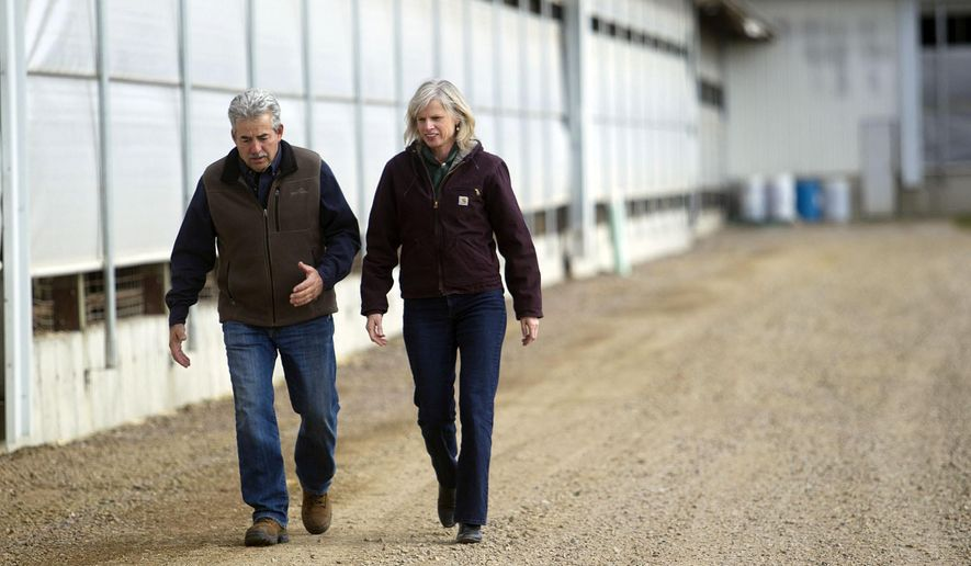 Norm-E-Lane Farm owner Jerry Meissner, left, walks with Democratic gubernatorial candidate Mary Burke at his farm in Chili, Wis., Friday, Oct. 31, 2014. (AP Photo/The Marshfield News-Herald, Megan McCormick)