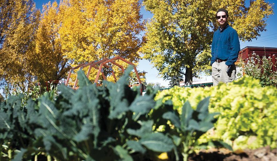 University of Wyoming second year geography graduate student Justin Frazier stands in the LaBonte Community and Kids Garden on Tuesday among the remaining black kale and lettuce.(AP Photo/Laramie Daily Boomerang, Jeremy Martin)