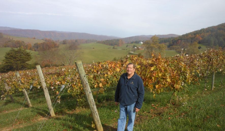 Winery owner Wayne Gay stands by some of his Niagara grape vines after the harvest at his Watauga Lake Winery on Oct. 24, 2014 in Butler, Tenn.  Gay is hoping a proposed federal wine-producing designation for the region will be approved and more wineries will be attracted to the area. Such designations are officially called an American Viticulture Area and are made by the U.S. Alcohol and Tobacco Tax and Trade Bureau.   (AP Photo/The Johnson City Press, John Thompson)