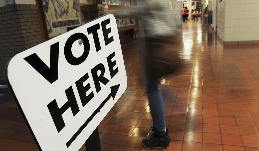 Voters head to the polls at Benton Harbor High School on Election Day Tuesday, November 4, 2014, in Benton Harbor, Mich.(AP Photo/The Herald-Palladium, Don Campbell)