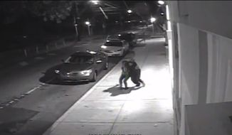 Screen grab from video. (http://blog.phillypolice.com/)