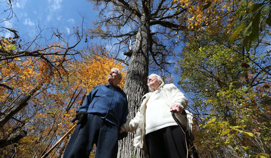 In this photo taken on Friday, Oct. 30, 2014, Phillip Meltzer and his sister, Martha Meltzer Spalding, stand in front of a tall Burr Oak on land they used to play on when they were kids in Shelbyville, Ind.. Central Indiana Land Trust has acquired the 60 acres in rural Shelby County that is home to some of the oldest trees in the state. (AP Photo/The Indianapolis Star, Mike Fender)  NO SALES