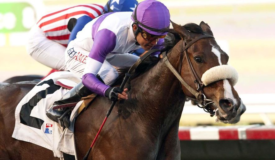 This photo provided by Benoit Photo shows Reddam Racing's More Complexity and jockey Mario Gutierrez winning the $100,000 Betty Grable Stakes, Sunday, Nov. 9, 2014 at Del Mar Thoroughbred Club in Del Mar, Calif. (AP Photo/Benoit Photo)