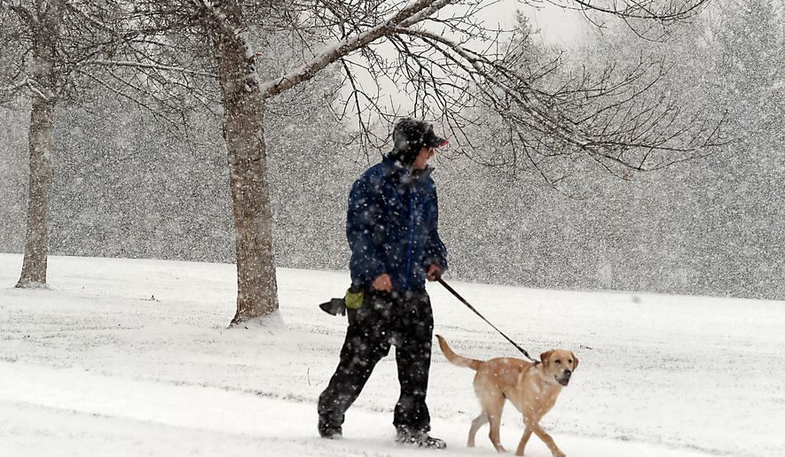 Peter Moses, of Fort Collins, walks his dog, Ziggy, a 7-month-old yellow lab, in her first snowfall at Troutman Park, early Tuesday, Nov. 11, 2014, in Fort Collins, Colo. Temperatures aren't expected to get out of the teens in parts of eastern Colorado thanks to the remnants of a powerful storm that hit Alaska over the weekend. (AP Photo/The Coloradoan, V. Richard Haro)