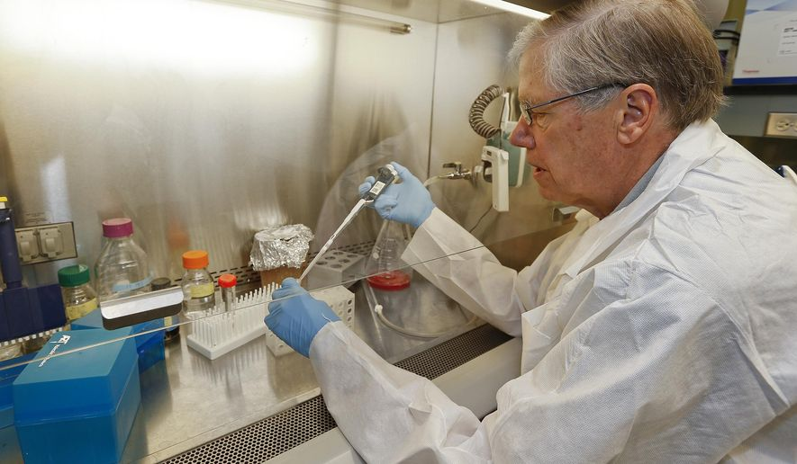 In this photo taken in June 2014, Dr. George Carlson, director of the McLaughlin Research Institute, who focuses his research on Alzheimer's disease, works in his Great Falls, Mont. lab. Mysterious illnesses baffled doctors and scientists for years, until the early 1980s when their cause was finally discovered. The discovery - that these and other diseases are caused not by genetic mutations or outside pathogens like viruses or bacteria, but by naturally occurring but damaged proteins within the body - turned the scientific community on its head. They are called prions - misfolded proteins that are infectious and cause fatal neurodegenerative diseases in animals and humans. McLaughlin Research Institute has become a biomedical outpost of the Montana prairie. Inside its blue and orange exterior, MRI scientists have built reputations studying neurodegenerative brain diseases like Alzheimer's, Parkinson's and multiple sclerosis.   (AP Photo/The Great Falls Tribune, Larry Beckner)  NO SALES