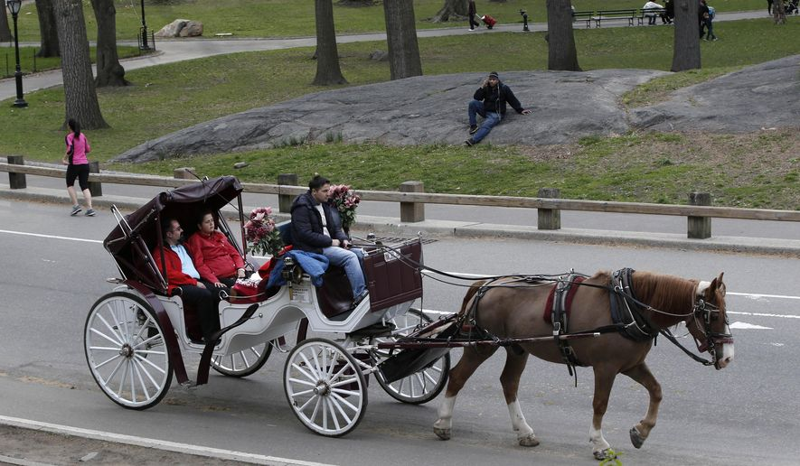 FILE - In this April 28, 2014 file photo, a horse-drawn carriage takes passengers for a ride around Central Park in New York. Mayor Bill de Blasio's long-delayed plans to ban the city's horse carriages are finally moving forward with a bill that phases out the industry by 2016 and dangles a carrot for the soon-to-be unemployed drivers: a career driving a taxi. (AP Photo/Kathy Willens, File)