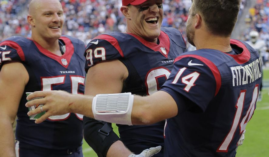 Houston Texans' J.J. Watt, center, celebrates with teammate Ryan Fitzpatrick, right, after they connected for a touchdown against the Tennessee Titans during the second half of an NFL football game Sunday, Nov. 30, 2014, in Houston. (AP Photo/Eric Gay)
