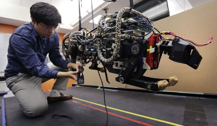 In this Sept. 30, 2014, photo, researcher Hae Won Park plugs the batteries into a robotic cheetah at the Massachusetts Institute of Technology in Cambridge, Mass. MIT scientists said the robot, modeled after the fastest land animal, may have real-world applications, including for prosthetic legs. (AP Photo/Charles Krupa)