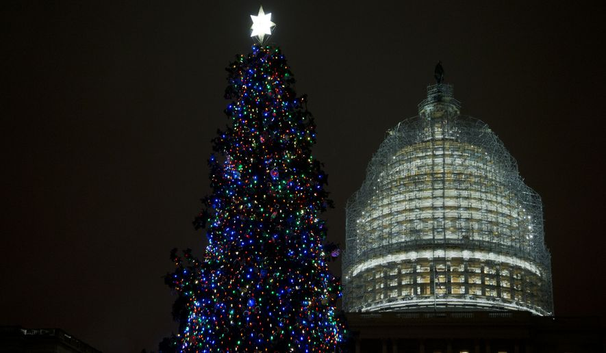 The U.S. Capitol Christmas tree is seen after being lit by House Speaker John Boehner and Make-A-Wish Foundation recipient Aaron Urban, 10, from Linthicum, Md., on  the West Front of the Capitol in Washington Tuesday, Dec. 2, 2014. The 2014 U.S. Capitol Christmas Tree is an 88-foot white spruce from the Chippewea National Forest in Cass Lake, Minn.  (AP Photo/Manuel Balce Ceneta)
