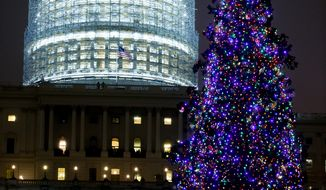 The U.S. Capitol Christmas Tree, a white spruce from the Chippewa National Forest in Cass Lake, Minnesota.(Andrew Harnik/The Washington Times)