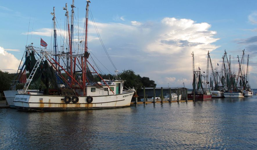 FILE - In an Aug. 18, 2013, file photo, shrimp boats sit at dock in Mount Pleasant, S.C.  The International Conference on Shellfish Restoration opens in nearby Charleston, S.C., on Wednesday, Dec. 10, 2014. The conference will focus on such things as restoring coastal areas so they can again support shellfish and enhancing shellfish populations that already exist. (AP Photo/Bruce Smith, File)