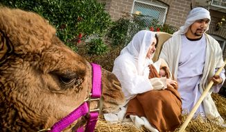 In this file photo, Faith and Action hosts a nativity scene including actors in period costume portraying Mary, Joseph, the Baby Jesus, live camels and a donkey, Washington, D.C., Thursday, December 11, 2014. An Idaho couple are appealing to the 9th Circuit Court of Appeals after losing a lawsuit in federal district court attempting to overturn their homeowners association's ban on a live nativity display they set up around Christmas.  (Andrew Harnik/The Washington Times) **FILE**