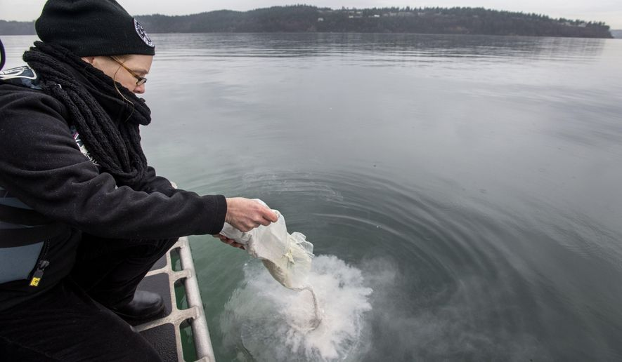 In this photo taken on Thursday, Dec. 18, 2014, Terry Jaeger, a forensics autopsy technician with the Pierce County Medical Examiner's Office, empties the unclaimed remains of Robin Bidwell into the waters of Puget Sound near Fox Island, Wash. The remains of 23 people that were either unwanted or for which no relatives could be found were laid to rest there. (AP Photo/The News Tribune, Drew Perine)