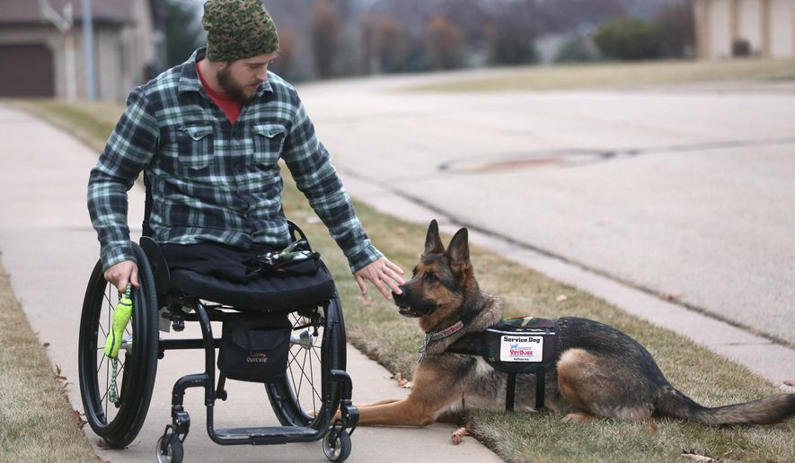 ADVANCE FOR USE SATURDAY, DEC. 20 - In this photo taken on Dec. 10, 2014, , Christopher Billmyer gives a command to his service dog Odin, while playing with him at his home in Dubuque, Iowa. Billmyer's life took an unexpected turn on Oct. 23, 2010, when he lost both legs when he was injured by an improvised explosive device in the southern Afghanistan province of Helmand. After his discharge, Billmyer though selected a German shepherd, obtained from American's VetDogs. For nearly two years, Odin has been his close companion. (AP Photo/The Telegraph Herald, Jessica Reilly)