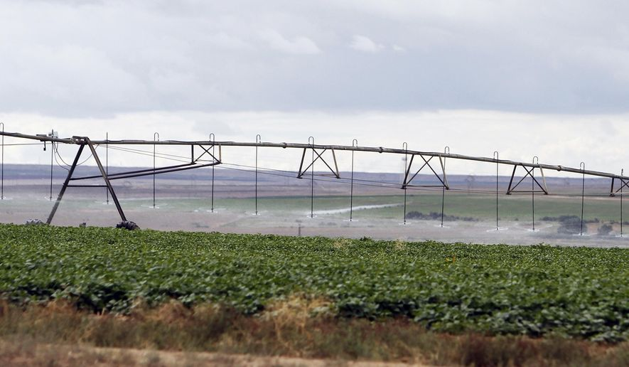 In this Aug. 9, 2014 photo, crops are watered at the Navajo Agricultural Products Industry's farm south of Farmington, N.M. When the federal government announced it would allow American Indian tribes to grow and sell marijuana, the same discussions many had about casinos and alcohol resurfaced. The prevailing thought is that they have a big enough problem with alcohol addiction; adding marijuana to the mix would be too much. (AP Photo/Farmington Daily Times, Jon Austria)