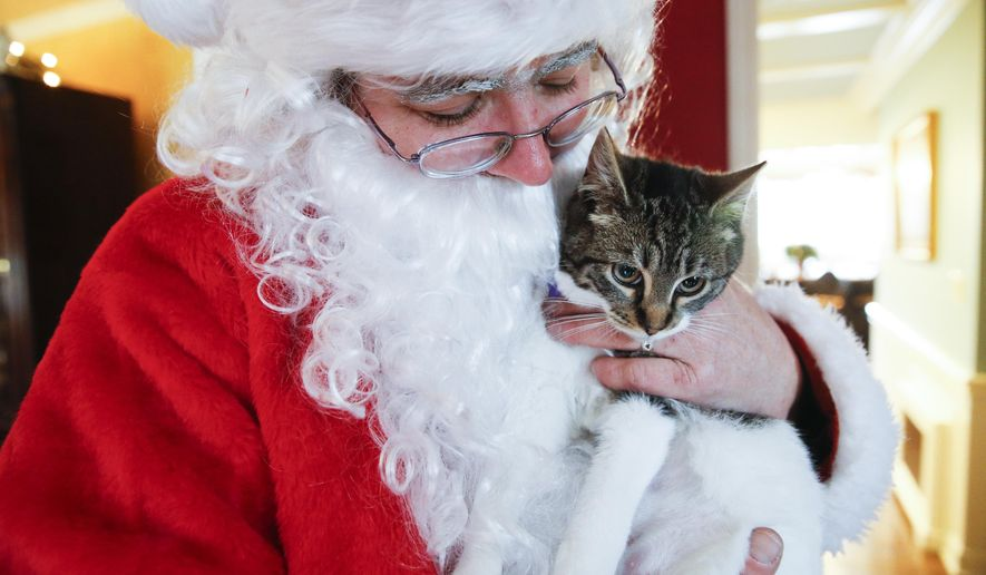 Melissa Morgan holds, Valerie the cat, while dressed as Santa Claus in Chatham, N.J., Thursday, Dec. 25, 2014. The St. Hubert's Animal Welfare Center delivers dogs and cats to families on Christmas day. (AP Photo/The Star-Ledger, Alex Remnick)  TV OUT; MAGS OUT; INTERNET OUT; NO SALES; NO ARCHIVING