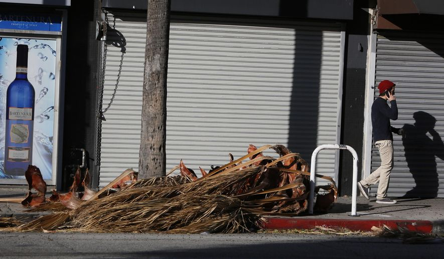 A pedestrian walks past fallen palm fronds along a street in the Fairfax district in Los Angeles, Calif., on Thursday, Dec. 25, 2014. The winds, following a cold front that raced through the state overnight, swept skies clean and left city streets covered with debris. (AP Photo/Richard Vogel)