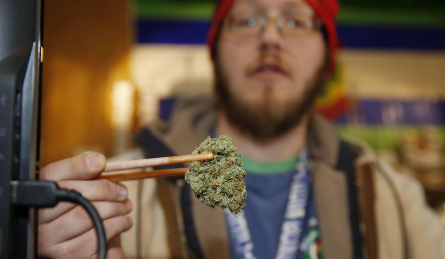Sales associate Matt Hart uses a pair of chopsticks to hold a bud of Lemon Skunk, the strain of highest potency available at the 3D Dispensary, in Denver in this Friday, Dec. 19, 2014, file photo. (AP Photo/David Zalubowski, File)