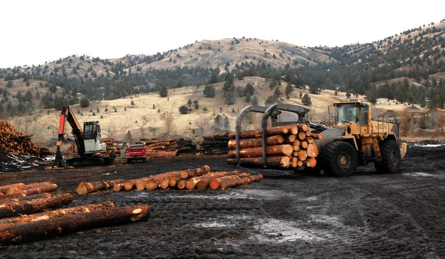 In this photo taken on Nov. 20, 2014, a loader stacks logs at the Malheur Lumber Co. mill in John Day, Ore. The mill was on the verge of closing in 2012, but timber interests and conservation groups overcame decades of fighting to compromise on logging projects that also reduced the danger of wildfire on the Malheur National Forest. The timber produced has allowed the mill to add another shift, and the national forests has hired 40 more people to work on projects. (AP Photo/Jeff Barnard)