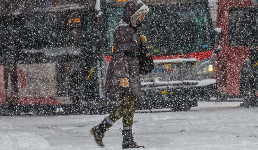 A pedestrian walks past stuck city buses during a heavy snowstorm in the District. Slick roadways restricted the movement of Metro busses Tuesday, with drivers sticking to snow routes that included mostly major arteries. (Associated Press)