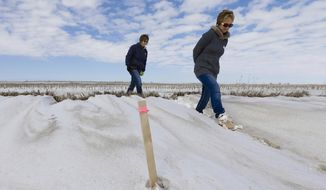 FILE - In this March 11, 2013, file photo sisters Jenni Harrington, left, and Abbi Kleinschmidt pass a stake that marks the proposed route of the Keystone XL pipeline on Harrington's property near Bradshaw, Neb. The Republican-led Congress appears ready to approve the Keystone XL oil pipeline but Harrington says they won't sell out the next generation for any amount, not even $50 million. No matter what actions are taken in Washington, the entire 1,179-mile project could be delayed until the state of Nebraska signs off on the route.  (AP Photo/Nati Harnik, File)
