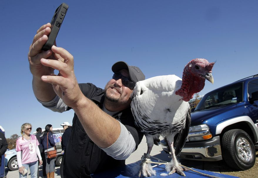 """Taking """"selfies"""" has become a fun and popular practice, as this Texas football fan shows. But a new study of men and social media finds that guys who post a lot of selfies on social media also tend to be narcissistic and self-objectifying. (AP Photo/Tim Sharp)"""