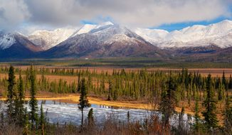 Wrangell-St. Elias National Park in Alaska, view from Dead Dog Hill. Credit: National Park Service