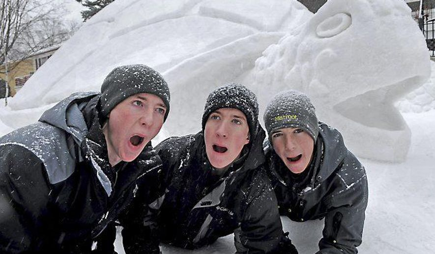 "In this photo taken on Thursday, Jan. 8, 2015, during a light snowfall, brothers, from left, Trevor, 19, Austin, 20, and Connor Bartz, 16, try to make their best turtle face in front of their 12-foot-tall, 39-foot-long and 31-foot-wide snow turtle in their front yard in New Brighton, Minn. They said it took over 300 hours of combined labor to make it. ""Last year some kids screamed at the shark,"" said Connor of their 2014 sculpture, so this year they said they wanted to build a sculpture that was distinct but friendly looking. ""It takes up our whole front yard,"" said Austin. ""It couldn't be bigger.""  (AP Photo/The St. Paul Pioneer Press, Jean Pieri )  MINNEAPOLIS STAR TRIBUNE OUT"