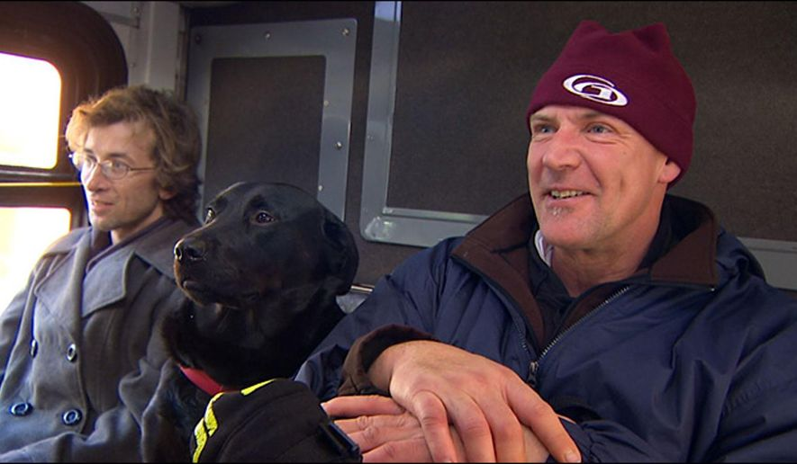 "This image provided by KOMO-TV shows Eclipse, a black Labrador, riding between two other passengers on her way to the dog park. In owner Jeff Young's words, ""She's a bus-riding, sidewalk-walking dog."" Young says his dog sometimes gets on the bus without him, and he catches up with her at the dog park three or four stops away. Bus riders report she hops onto seats next to strangers, and watches out the window for her stop. Says commuter Tiona Rainwater, ""All the bus drivers know her ... she makes everybody happy."" A Metro Transit spokesman says the agency loves that a dog appreciates public transit. (AP Photo/KOMO-TV)"