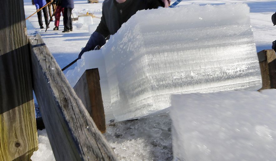 John Jurczynski loads blocks of ice from Squam Lake during the annual ice harvest Tuesday, Jan. 13, 2015, in Sandwich, N.H.  The tradition, which goes back a century, stores the ice in ice houses and uses them in the summer at the Rockywold-Deephaven camps instead of refrigeration units. (AP Photo/Jim Cole)