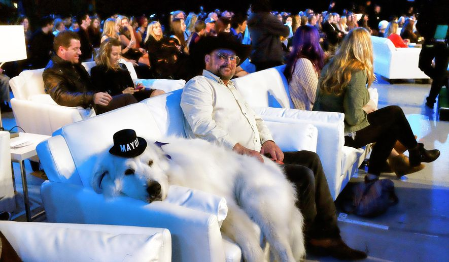 "This Saturday, Jan. 10, 2015 photo Duke a 7 year old Great Pyrenees who was elected mayor In Cormorant, Minn. lounges on a couch with David Rick during the 2015 World Dog Awards at the Barker Hanger in Santa Monica. Awards season in Hollywood has begun. For at least one show, though, there will be no ""Lights, Camera, Action,"" no tables to maneuver around, no long speeches and no seat fillers. That's because the show and nearly every award in it is going to the dogs.  Canine winners, along with a few humans and a cat, will be presented with golden fire hydrant statuettes. Dogs will lounge on sofas and overstuffed chairs in front of the stage. (AP Photo/Richard Vogel)"