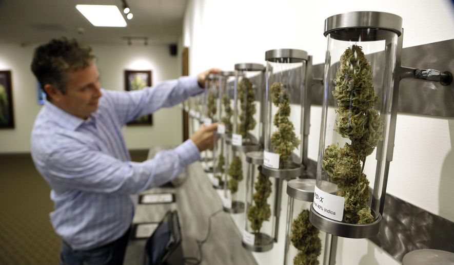 ADVANCE FOR USE SATURDAY JAN. 17, 2015, AND THEREAFTER- File - In this Nov. 5, 2014, file photo, Shane McKee, co-founder of Shango Premium Cannabis medical marijuana dispensary, pulls a sample from their display of cannabis flowers in Portland, Ore. Oregon voters have spoken on marijuana legalization and now legislators want their say. Though the legislative session is more than two weeks away, lawmakers have already introduced more than a dozen bills related to pot. (AP Photo/Don Ryan, File)