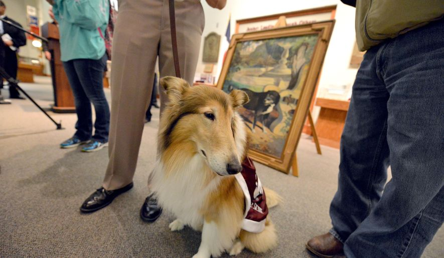 Texas A&M mascot Reveille VIII sits in front of a recently recovered painting of Reveille I during a news conference and unveiling on campus in College Station, Texas, Wednesday, Jan. 21, 2015. The painting which was commissioned in 1943, had been lost since the early 90's when it disappeared during building renovations and was found after a tip from a local student lead university police on a month long investigation. (AP Photo/The Bryan-College Station Eagle, Sam Craft)