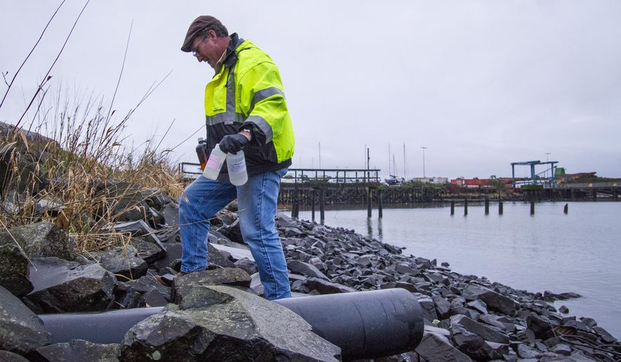 FILE - In this Jan. 5, 2015, file photo, Robert Evert, permit and project manager for the Port of Astoria, walks back after collecting samples along Pier 2 in Astoria, Ore. Federal regulators will announce whether Oregon has improved efforts to protect water and fish from pollution generated by logging on private lands, storm water runoff from construction sites, and leaky septic tanks. (AP Photo/The Daily Astorian, Joshua Bessex, File)