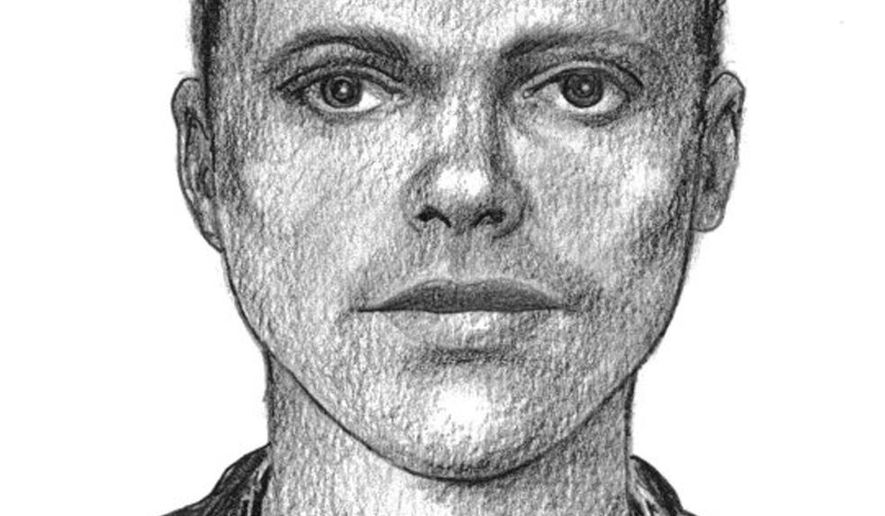 In this sketch released Feb. 3, 2015, by the Mountain View Police Dept. is a sketch of a possible suspect in the fatal shooting of a man backstage at a rap concert in Silicon Valley. Eric Johnson was shot several times Aug. 22 at Shoreline Amphitheatre in Mountain View, Calif. where rappers Wiz Khalifa and Young Jeezy performed. The 38-year-old died at a hospital. Police have released two sketches of a possible suspect, one with hair and one without, and are asking the public to help identify him. (AP Photo/Mountain View Police Dept.)