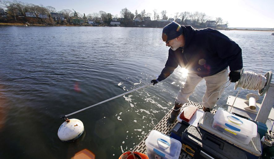 In this Monday, Dec. 15, 2014 photo University of Rhode Island professor John King hooks on to a mooring from the deck of a boat he uses to extract core samples from underwater sediment deposits before leaving the dock in Apponaug Cove on the waters of Greenwich Bay in Warwick, RI. URI researchers are working with Native Americans to ensure that wind farm projects don't disrupt sunken burial grounds. (AP Photo/Stephan Savoia)