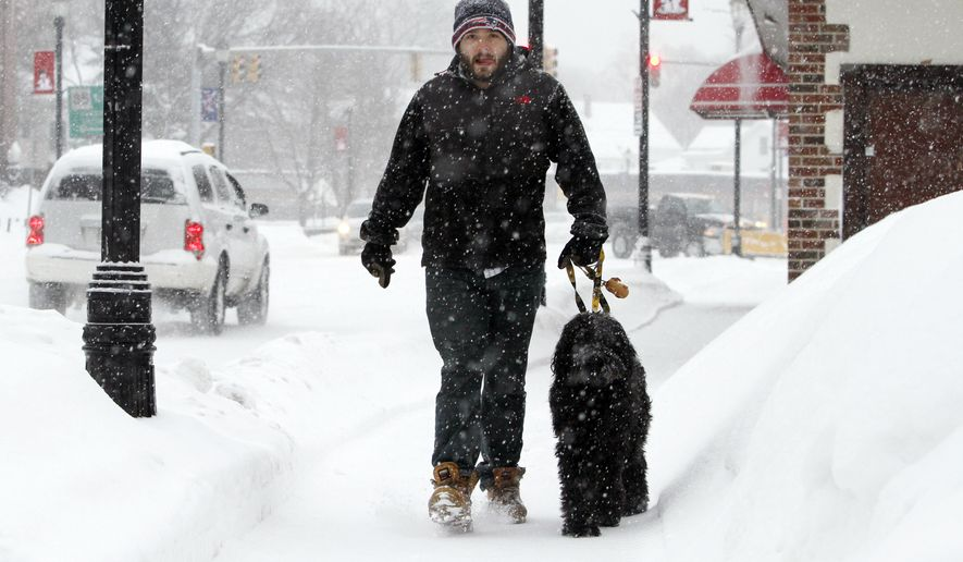 Alex Desrochers walks his dog Scrum, Monday, Feb. 9, 2015, in Marlborough, Mass. New England and portions of New York state awoke Monday to a fresh blanket of snow as a storm threatening to bring up to 1 to 2 feet to some areas churned across the Northeast, making for a slippery, tedious commute to start the workweek. (AP Photo/Bill Sikes)