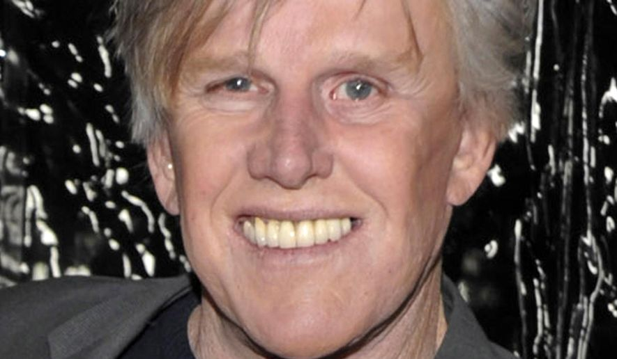 """FILE - In this Dec. 8, 2009 file photo, actor Gary Busey arrives at the premiere of the feature film """"Crazy Heart"""" in Beverly Hills, Calif. Authorities say actor Gary Busey struck and slightly injured a woman with his car while backing out of a shopping center parking lot in Malibu. The accident happened shortly before 3 p.m. Friday Feb. 13, 2015 on the Pacific Coast Highway. (AP Photo/Dan Steinberg, File)"""