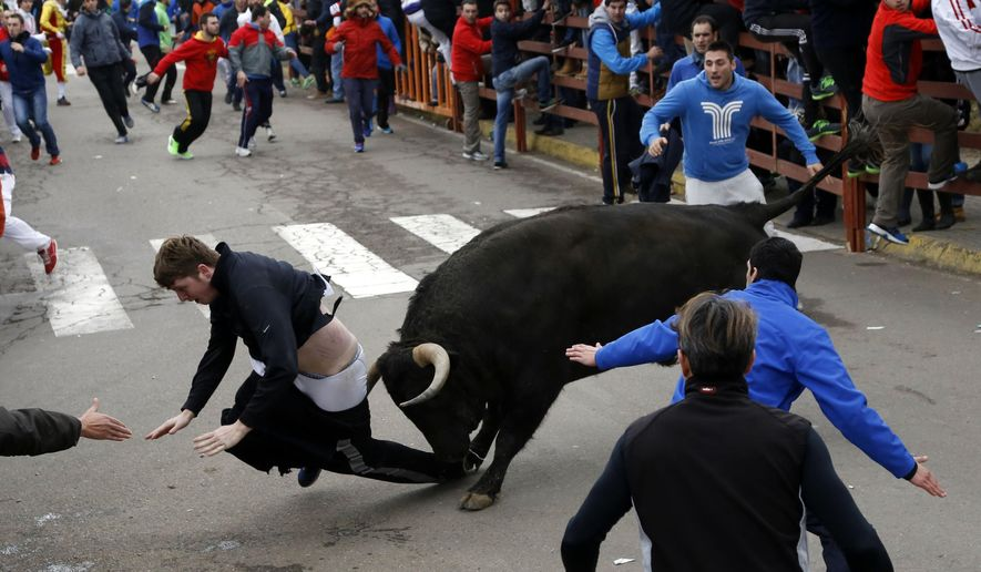 """Benjamin Miller, 20, from Georgia, is gored by a bull during the """"Carnaval del Toro"""" in Ciudad Rodrigo, Spain, on Sunday, Feb. 15, 2015. An American youth is recovering in the intensive-care unit of a hospital in western Salamanca after being savagely gored during a bullfighting festival celebrating Carnival, officials said Sunday. Surgeon Enrique Crespo said he was called to operate on 20-year-old Benjamin Miller from Georgia, who had been gored and tossed by a large fighting bull on Saturday, the first day of nearby Ciudad Rodrigo's """"Carnaval del Toro."""" (AP Photo/Jose Vicente)"""