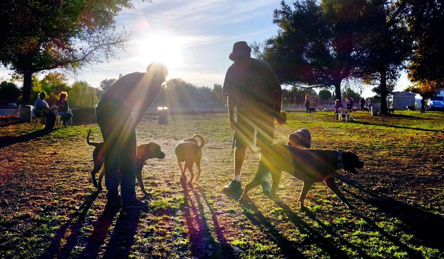 FILE - In this Sunday Dec. 1, 2013 file photo, visitors and their dogs enjoy a sunny afternoon at the Sepulveda Basin Dog Park in the Encino section of Los Angeles. The American Pet Products Association's annual report on pet industry spending says Americans spent $58 billion in 2014 on their 397 million pets, which range from freshwater fish and reptiles to cats and dogs.  (AP Photo/Richard Vogel, file)