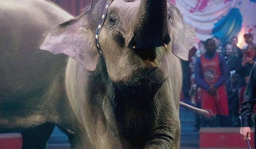 FILE - In this Feb. 19, 2015 file photo, four-year-old Asian elephant April rings bell during Ringling Bros. and Barnum & Bailey Circuspre-show at Knoxville Civic Coliseum, Knoxville, Tenn.  The circus will phase out the show's iconic elephants from its performances by 2018, telling The Associated Press exclusively on Thursday, March 5, 2015 that growing public concern about how the animals are treated led to the decision. (AP Photo/The Daily Times, Mark A. Large) MANDATORY CREDIT