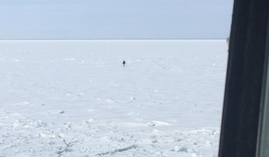 In a photo provided by the crew of Coast Guard Cutter Neah Bay, home-ported in Cleveland, Ohio, spot a 25-year-old man attempting to walk across Lake St. Clair, March 5, 2015. The crew is transporting the man, a U.S. citizen who was hypothermic, back to shore in Algonac, Mich., where they will be met by emergency medical services. (AP Photo/U.S. Coast Guard, Lt. Josh Zike)