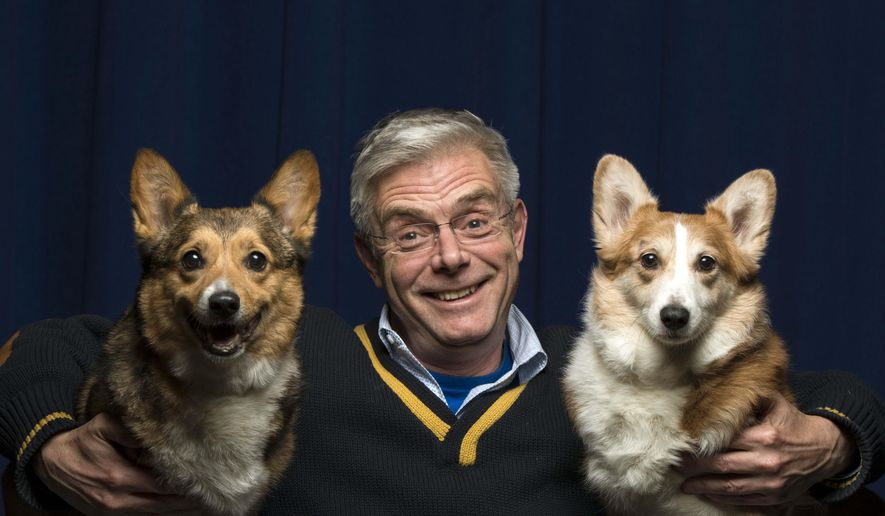 """This Feb. 5, 2015 photo shows Tony Award-winning director Stephen Daldry posing for a portrait with a pair of Pembroke Welsh Corgis named Mimi and Marco in promotion of his """"The Audience"""" at The New 42nd Street, in New York. (Photo by Drew Gurian/Invision/AP)"""