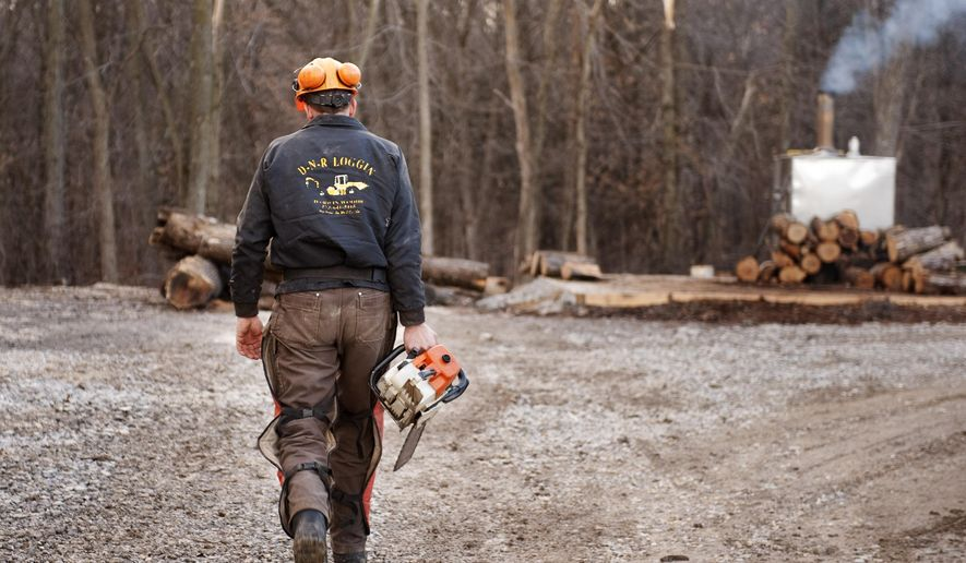 FILE - In this Feb. 21, 2014 file photo, Darwin Woods carries a chainsaw to cut wood for the wood burning stove he uses to heat both water and his home in Clark, Mo. Citing health concerns, the Environmental Protection Agency now is pressing ahead with new regulations to significantly limit the pollution from residential wood heaters. But some of the states with the most wood smoke are refusing to go along, claiming that the EPA's rules could leave low-income residents in the cold. (AP Photo/L.G. Patterson, File)