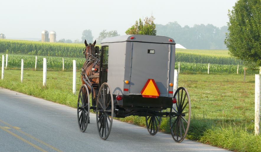 Amish buggy. By Ad Meskens, via Wikimedia Commons