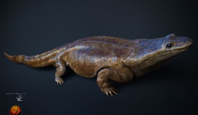 "In this image  made available by the University of Edinburgh on Tuesday March 24, 2015, shows an artist's rendition of a previously unknown species of crocodile-like ""super salamander"" that roamed the Earth more than 200 million years ago. (AP Photo/University of Edinburgh, Marc Boulay Cossima Productions)"