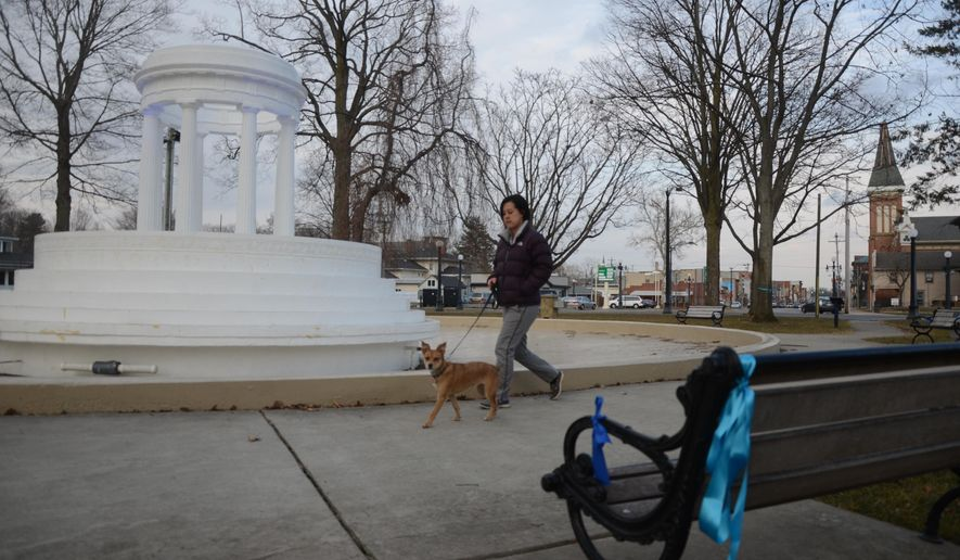 In this photo taken Monday, March 23, 2015, Gerica Lee walks her dog Simba near some of the ribbons placed at the circle in Marshall, Mich., for David Newman,  a 12-year-old boy was hit and critically injured by a pickup truck while trying to board a school bus last Friday. The sheriff's department says the seventh grader was hit in front of his home in Eckford Township as the Marshall Public Schools bus was stopped with its warning lights flashing. (AP Photo/The Enquirer, Trace Christenson)  NO SALES